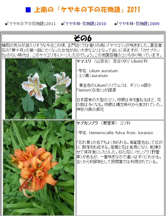 上南の「ケヤキの下の花物語」2011 神奈川県立上溝南高等学校公式ホームページより
