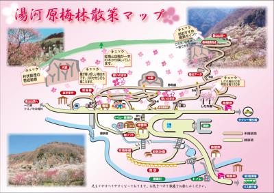 湯河原梅林散策マップ(湯河原町ホームページより)